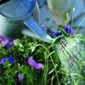 Irrigation System Supplies Drip & Automatic Equipment Ipswich