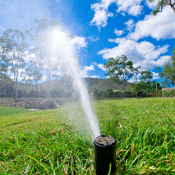 Which Irrigation System Should I Be Using?